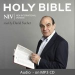 NIV Audio Bibles - Buy Christian Books Online here