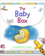 The Baby Box - Bethan James - Buy Christian Books Online here