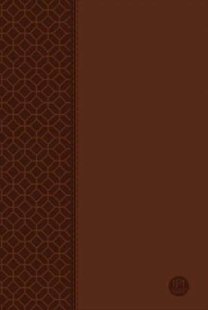 tPt - New Testament: Large Print - Brown - Buy Christian Books Online here